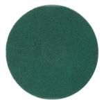 disco limpador verde